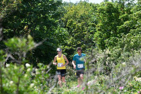 Hardlopen-natuur-wedstrijd