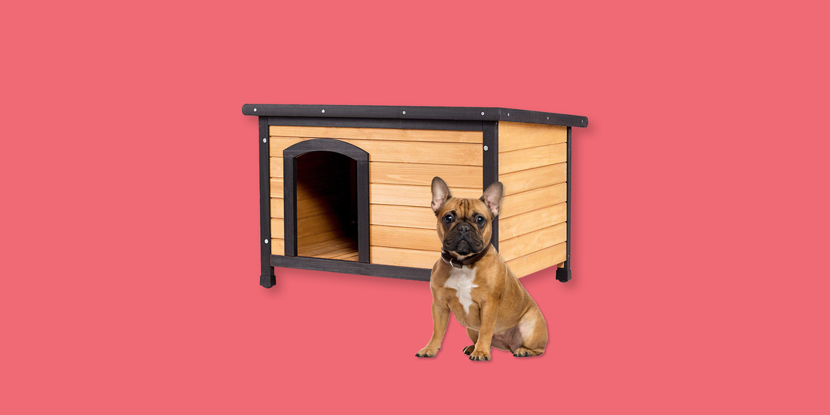 10 Best Insulated Dog Houses 2019 Winter Dog House Reviews