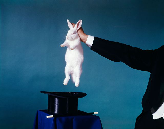 magician pulls a rabbit out of a hat