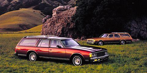 1979 Chevrolet Caprice Station Wagon