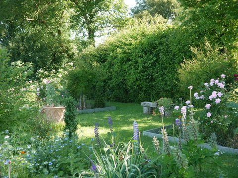 Charlie Hart's Garden