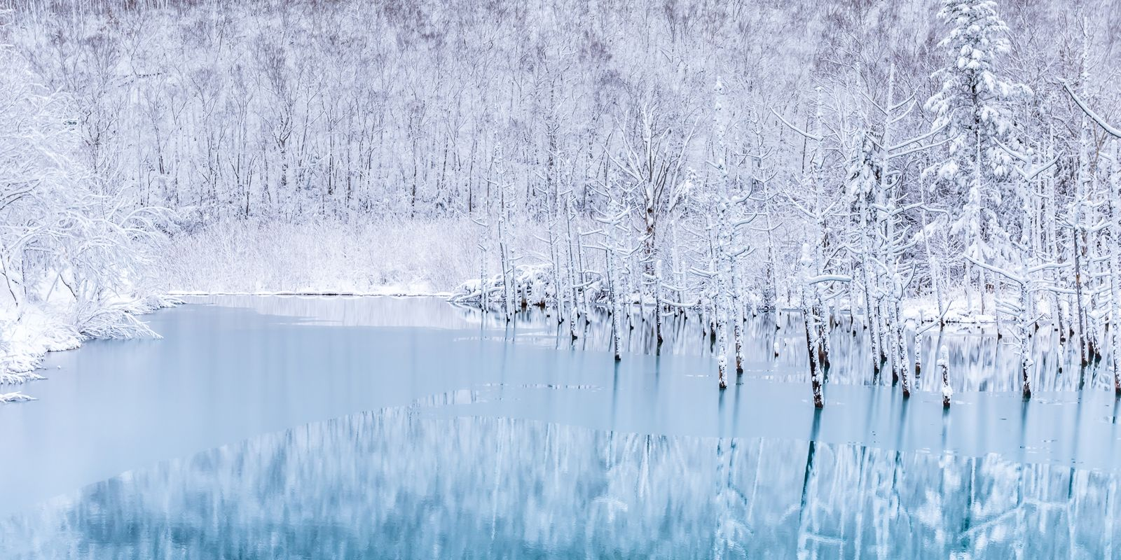 The blue pond in winter