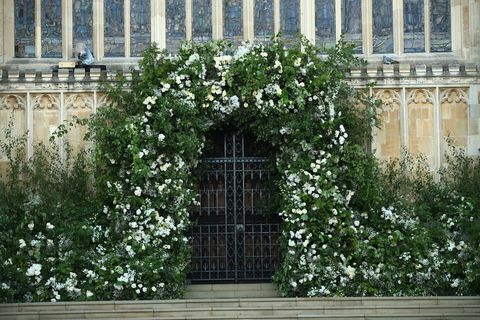 Wall, Plant, Architecture, Flower, Window, Facade, Tree, Building, Shrub, Arch,