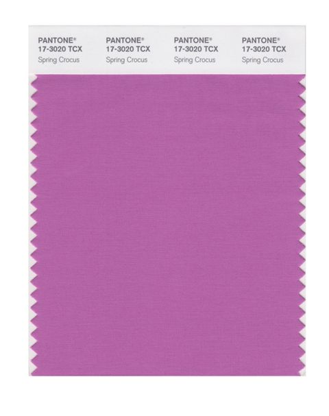 Purple, Violet, Pink, Lilac, Text, Paper product, Construction paper, Paper, Sketch pad, Magenta,