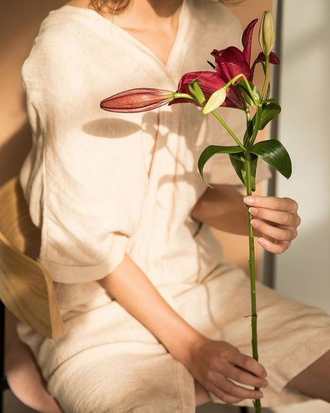 White, Flower, Anthurium, Plant, Pink, Botany, Cut flowers, Silk, Petal, Floristry,