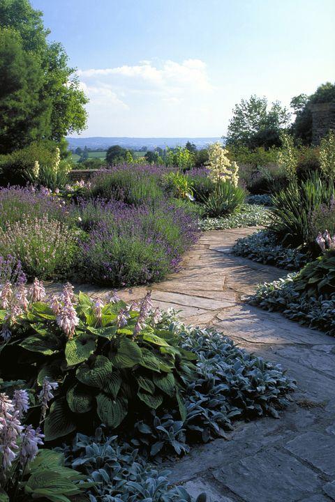 Gardens, Hestercombe, Somerset, England.