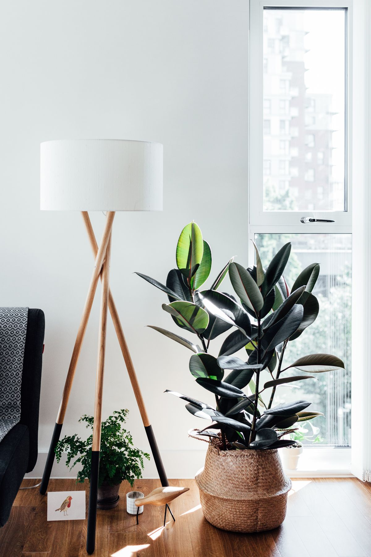A corner of a stylish living room