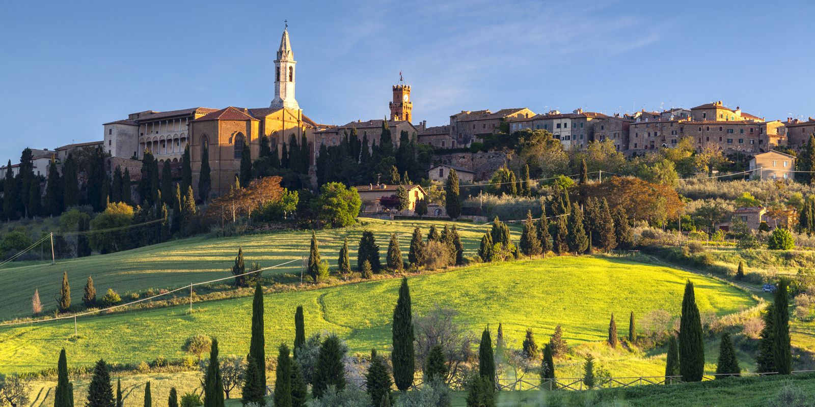 Italy, Tuscany, Orcia Valley, Pienza, Field with buildings in background