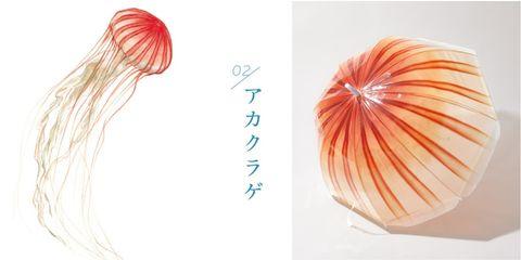 近期日本網拍品牌 felissimo 與山形縣的加茂水族館以水母優雅、飄逸的形象為靈感,聯名推出三款外型超療癒的「透明系水母雨傘」!