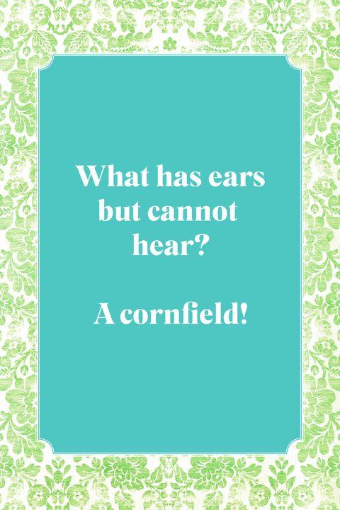 best jokes for kids ears but cant hear