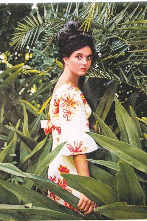 Beauty, Hairstyle, Botany, Plant, Vintage clothing, Art, Flower,