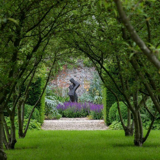 garden by robin templar williams fsgd
