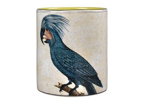 perroquets, ginori 1735