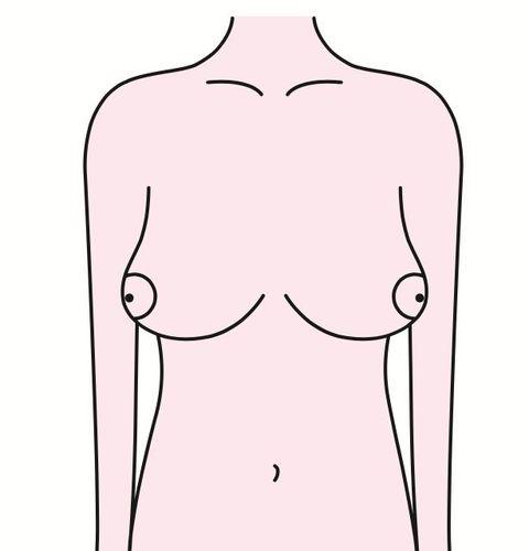 Shoulder, Joint, Line art, Chest, Arm, Standing, Neck, Line, Human body, Abdomen,