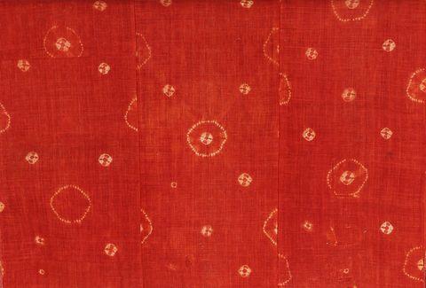高崎市染料植物園 赤は火の色・生命の色
