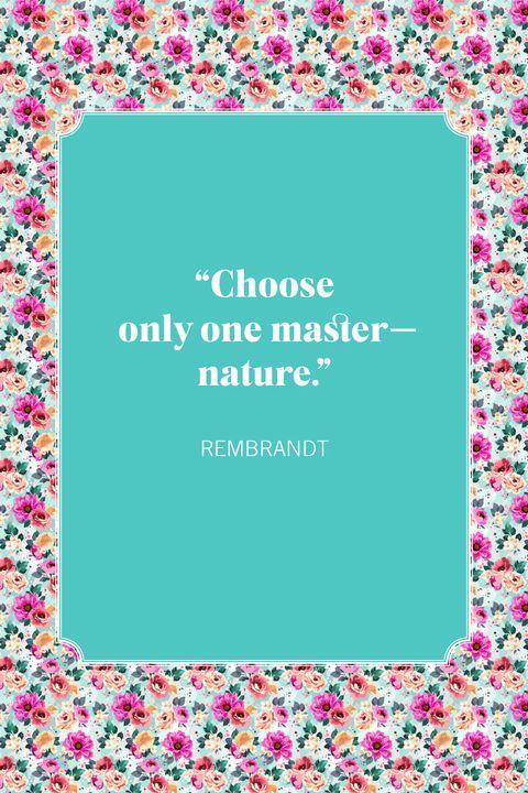 nature quotes rembrandt