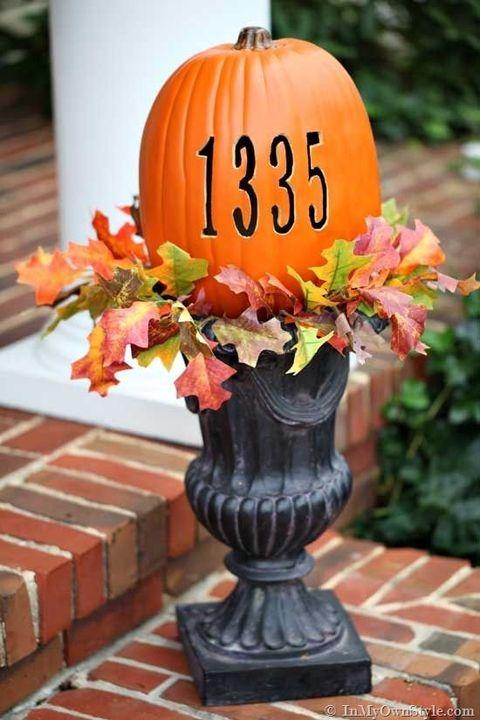pumpkin carving ideas  terrarium