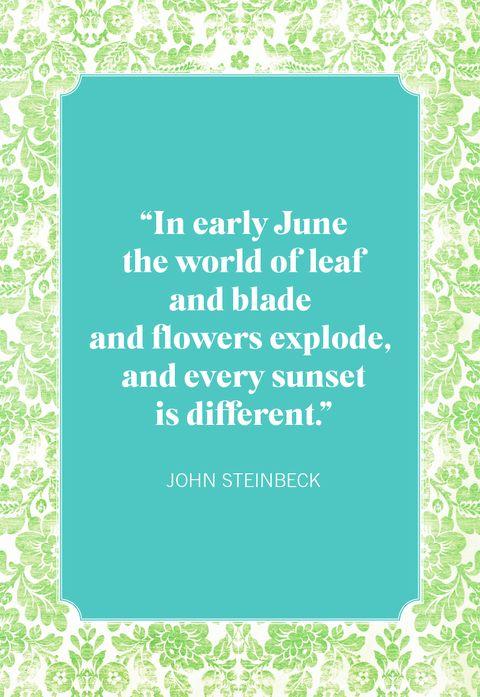 summer quotes john steinbeck