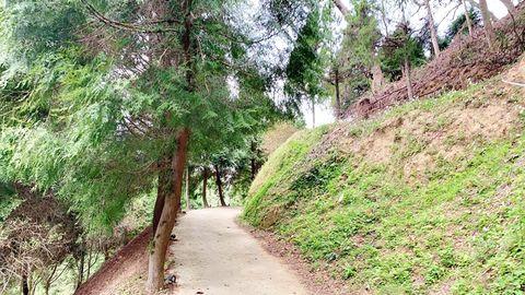 新竹最美豪華露營「野漾莊園」,合掌屋、白色網美帳篷、天然小樹屋