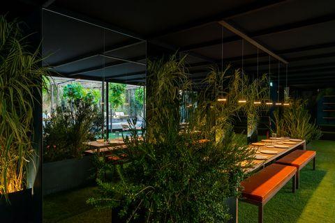 Lighting, Architecture, House, Grass, Interior design, Night, Building, Garden, Home, Room,