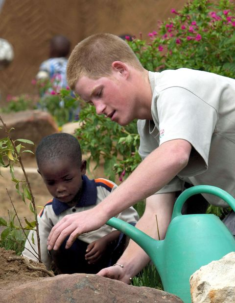 Child, Soil, Adaptation, Play, Gardener, Fun, Grass, Toddler, Plant, Gardening,