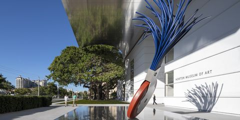 Architecture, Reflection, Tree, Water, Plant, House, Urban design, Reflecting pool, Building, Palm tree,