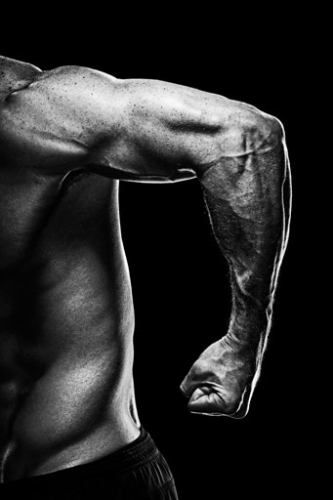 Muscle-Building Tips: Arms: Men\'s Health.com