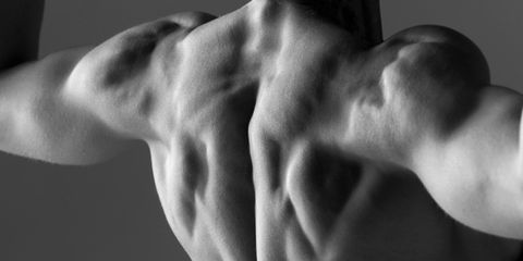 fit-body.jpg