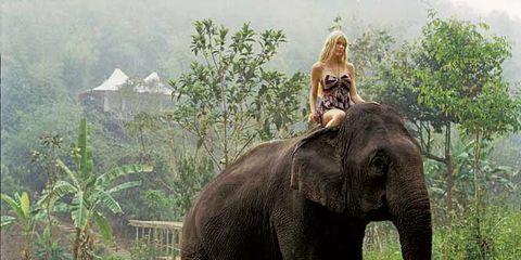 thailand-travel.jpg