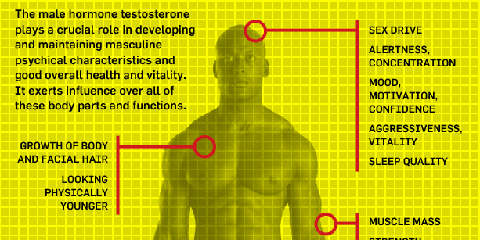 testosterone-chart1.png