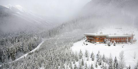 Snow, Winter, White, Freezing, Atmospheric phenomenon, Sky, Frost, Tree, Mountain, Black-and-white,