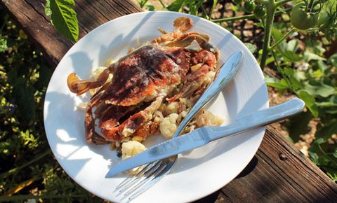 Cook The Best Soft Shell Crabs
