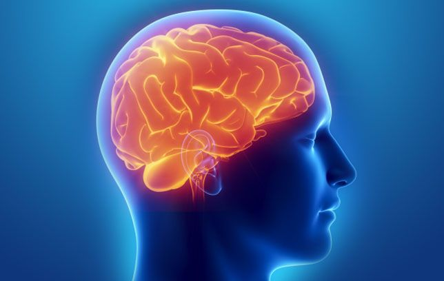 Benefits Of Dark Chocolate Boosts Brain Power