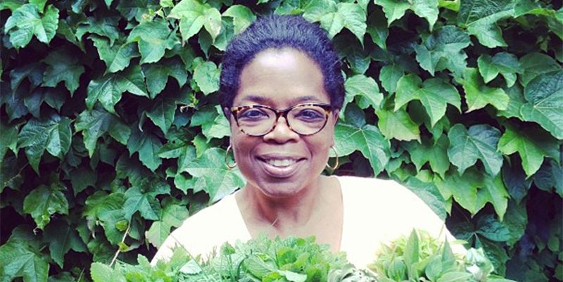 Pictures Of A Garden oprah's obsession with her garden is the best thing on the internet