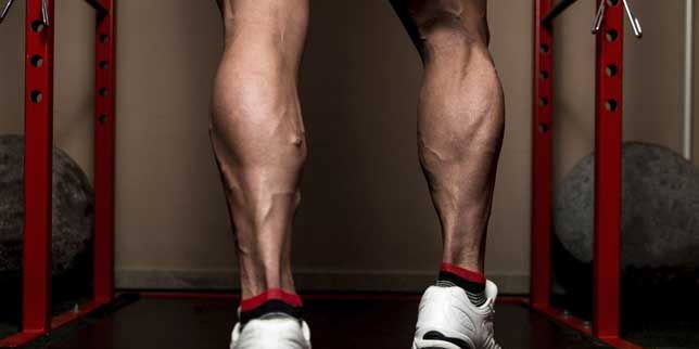 Maximize Your Lower-Body Strength