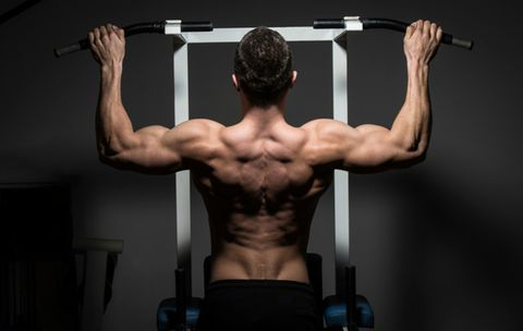 15 New Muscle Builders