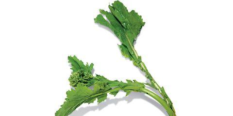 broccoli-rabe.jpg