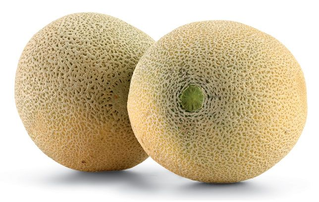 Cantaloupe Nutrition Facts A cup of fresh cantaloupe has just 60 calories and provides plenty of vitamin c, vitamin a table of contents. cantaloupe nutrition facts