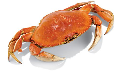Dungeness Crab Nutrition Facts