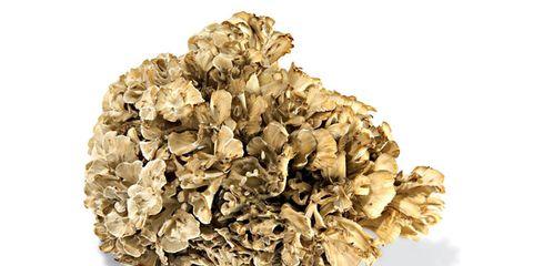 maitake-mushroom-nutrition-facts.jpg