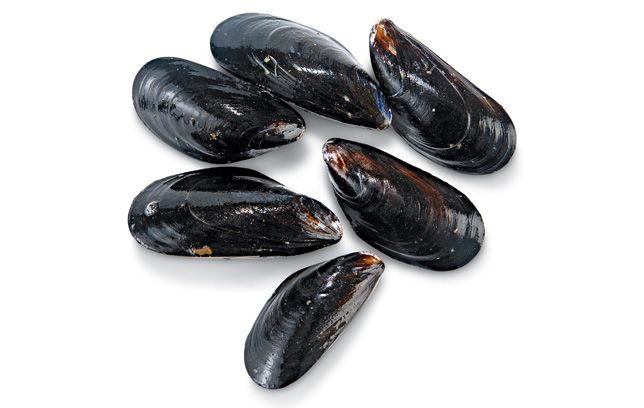 Mussels Nutrition Facts