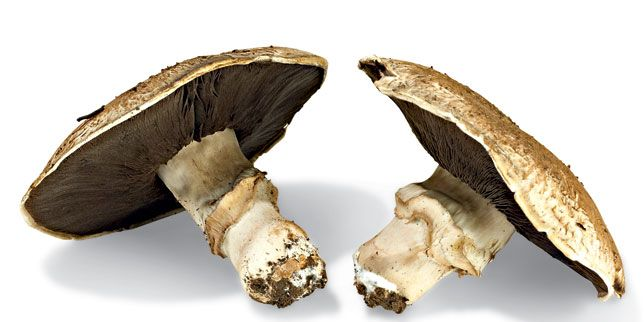 Portobello Mushrooms Nutrition Facts
