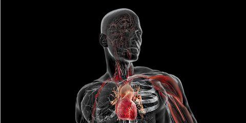 heart-graphic.jpg
