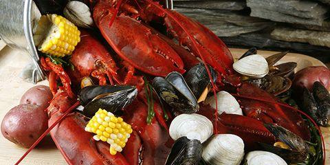 seafood-bake.jpg