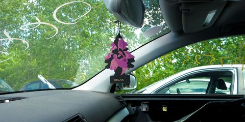 relax little trees in junkyard cars