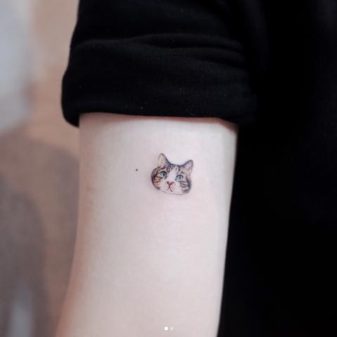 Temporary tattoo, Arm, Body jewelry, Wrist, Hand, Finger, Fashion accessory, Tattoo, Flesh, Paw,
