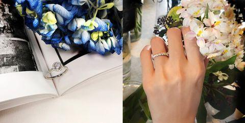 Photograph, Cobalt blue, Blue, Flower, Yellow, Bouquet, Plant, Fashion accessory, Finger, Hand,