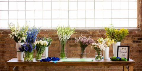 Blue, Houseplant, Cobalt blue, Flowerpot, Flower, Plant, Wall, Floral design, Room, Table,