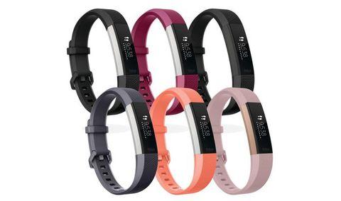 Fashion accessory, Orange, Dog collar, Collar, Material property, Strap, Buckle, Wristband, Belt, Jewellery,