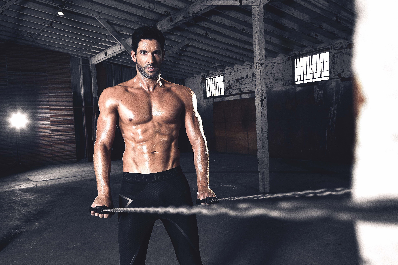 Dieta 50 30 20 bodybuilding